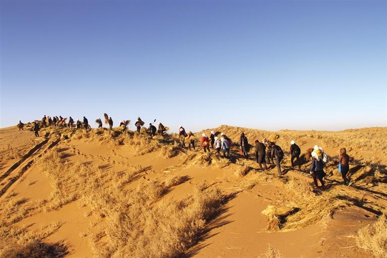 武威八步沙治沙造林群体获评2018―2019绿色中国年度人物